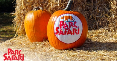 HALLOWEEN AT PARC SAFARI