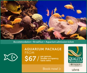 Quality Inn Levis - Aquarium Package