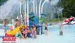Zoo Parc Safari - Wave Pool Water Park